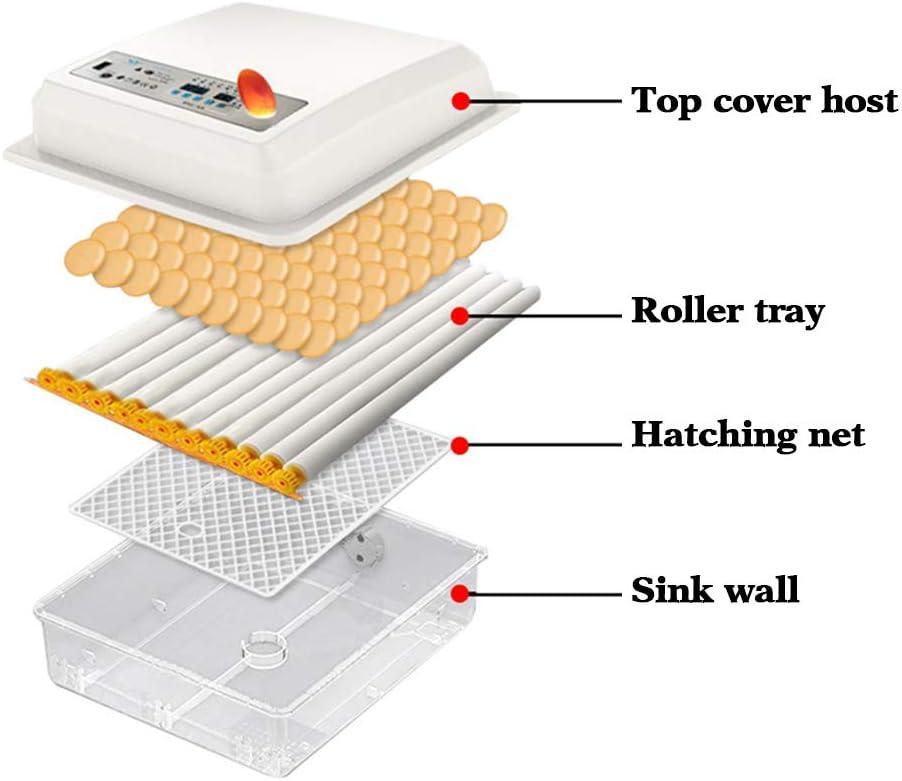 Uso Familiar KKTECT Incubadora De Huevos 36 Huevos Torneado autom/ático de Huevos Transparente Pantalla LED Digital M/áquina para incubar Huevos con Control de Temperatura para Pollos p/ájaros Patos