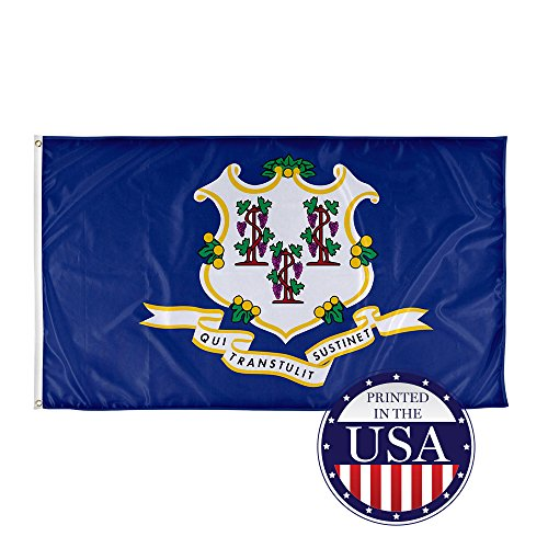 Vispronet - Connecticut State Flag - 3ft x 5ft Knitted Polyester, State Flag Collection, Made in The USA (Flag only)