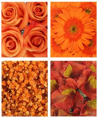Monochromatic Orange Flowers (Gerberas, Roses, Alstroemeria and Babys Breath) by Vistaflor Fresh Flowers