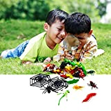 Dazzling Toys Party Pack Of Various Insects, Spiders with 2 Spider Webs.