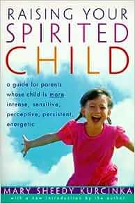 raising a spirited child pdf