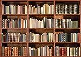 LYWYGG 10X8FT Office Backdrop Bookshelf Backdrop Vintage Bookcase Magic Books Grunge Ancient Library Vinyl Photography Background Photo Studio Props CP-49-1008
