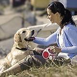 FLEXI Vario Retractable Dog Leash (Tape), 16