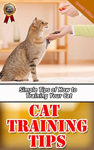 Cat Training Tips: Simple Tips of How to Training Your Cat