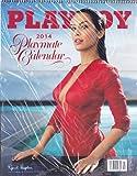 Playboy 2014, Playmate Calendar