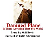 Damned Plane: Is There Anything That You Wish? | Will Bevis