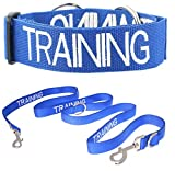 TRAINING Blue Color Coded L-XL Semi-Choke Dog Collar and 2 4 6 Foot or Coupler Professional Leash Sets (Do Not Disturb) PREVENTS Accidents By Warning Others of Your Dog in Advance (Collar + Coupler Professional Leash)