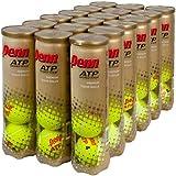 Penn ATP World Tour Extra Duty Tennis Balls (4-Ball) (Case)