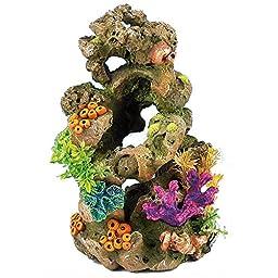 Caldex Classic Coral Life Coral On Lava (One Size) (Multicolored)