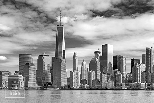 Lower Manhattan Skyline Featuring the World Trade Center Freedom Tower - Black and White, Viewed from Liberty State Park, Jersey City, - Center North Park