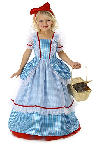 Wizard Of Oz Costumes Easy (Princess Paradise The Wizard of Oz Dorothy Pocket Princess Costume, Blue/White, Large)