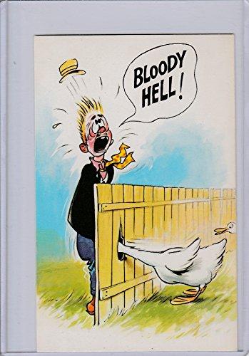 Vintage Comical Postcard