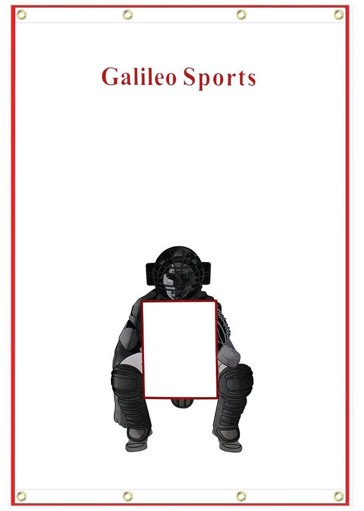 Galileo Vinyl Backstop Baseball/Softball Tarpaulin Backstop Batting cage Target with Bungees 4X6 by GALILEO