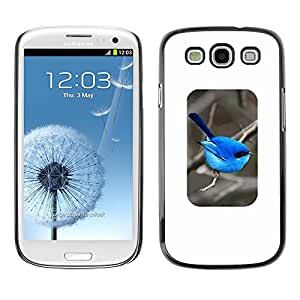 Estuche Cubierta Shell Smartphone estuche protector duro para el teléfono móvil Caso Samsung Galaxy S3 I9300 / CECELL Phone case / / bird blue minimalist songbird winter /