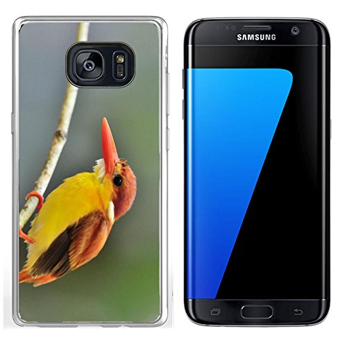 Luxlady Samsung Galaxy S7 Edge Clear case Soft TPU Rubber Silicone IMAGE ID 31333271 Bird Rufous backed Kingfisher Thailand