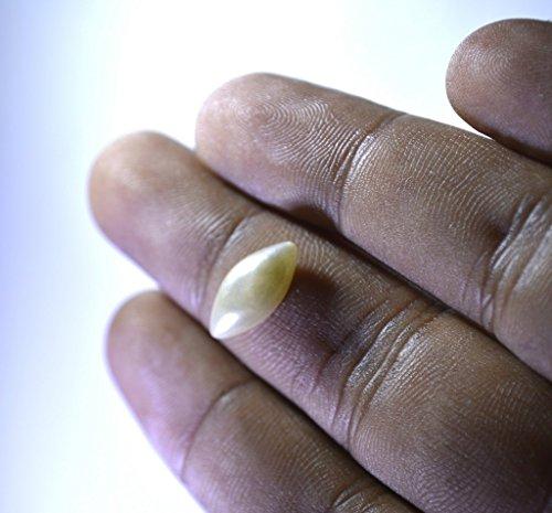 perle faux pierres précieuses en vrac 1 pièces 7 x 14 mm marquise blanc cassé cabochon pierres précieuses