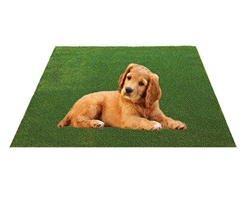 Sphere Turf Premium Dog Kennel Grass Mat 18 inch X 24 inch
