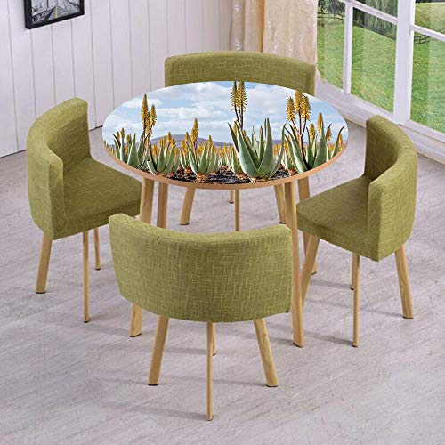 iPrint Round Table/Wall/Floor Decal Strikers/Removable/Photo from Aloe Vera Plantation Medicinal Leaves Remedy Fuerteventura Canary Islands Decorative/for Living Room/Kitchens/Office Decoration ()