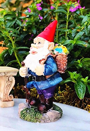 My Fairy Gardens Miniature Accessories - Red Cap Gnome with Flower Basket - Mini Dollhouse Supply Expressions ()