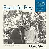 Bargain Audio Book - Beautiful Boy