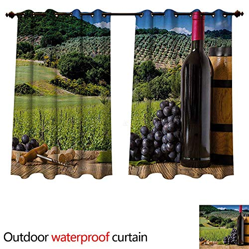 WilliamsDecor Wine Outdoor Balcony Privacy Curtain Idyllic Tuscany Country Landscape Agriculture Harvest Grape Plantation W55 x L45(140cm x 115cm)