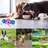 Dog Chew Bones Toys – Multifunctional Rubber Dog Bar Bell Chew Toy for Small and Medium Dogs – Soft TPR Tooth Cleaning Interactive Dog Toy – Cleans Teeth