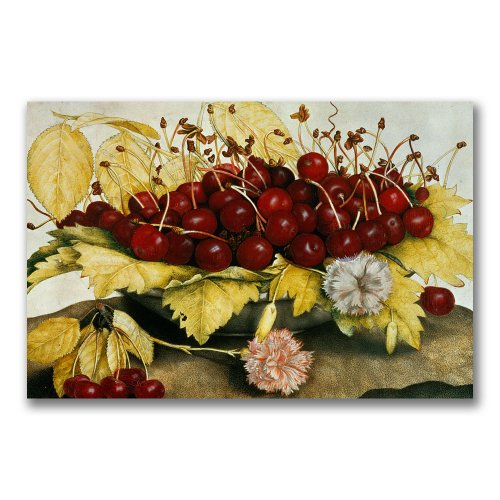 Cherries Carnations by Giovanna Garzoni, -Inch Canvas Wall Art