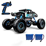 DoitY Electric RC Car, 1:16 4WD 2.4Ghz High Speed Off Road Remote Control Vehicle/ Truck, Two Rechargeable Batteries Included, Adults and Kids