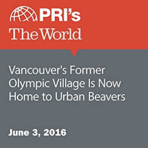 Vancouver's Former Olympic Village Is Now Home to Urban Beavers