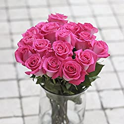Greenchoice - 50 Fresh cut Pink Roses | 20 '' long stem | No vase, for Valentine's Day