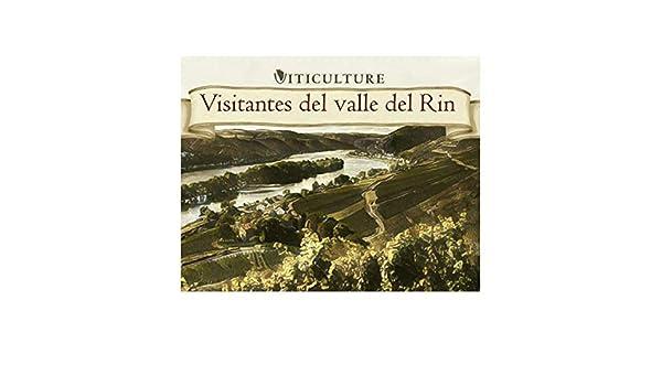 Maldito Games Viticulture - VISITANTES del Valle del RIN: Amazon ...
