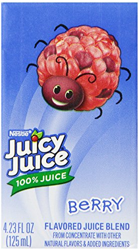 juicy-juice-100-juice-berry-8-count-423-ounce-boxes-pack-of-5