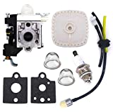 FitBest Carburetor RB-K106 with Repower Maintenance Kit Gaskets Spark Plug Air Filter for Echo PB-250 PB-250LN ES-250 Blowers