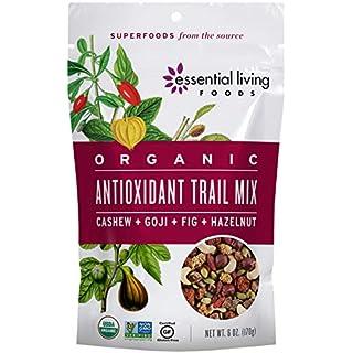 Essential Living Foods Organic Antioxidant Trail Mix, Mulberries, Goji Berries, Goldenberries, Pumpkin Seeds, Hazelnuts, Cashews, Vegan, Superfood, Non-GMO, Gluten Free, 6 Ounce Resealable Bag