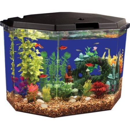 Full Hood Aqua Culture 6.5-Gal Semi-Hex Aquarium Kit with LED Lighting