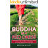 Buddha in a Red Dress: A Refreshing Guide to Mindfulness, Meditation and Transformational Adventures
