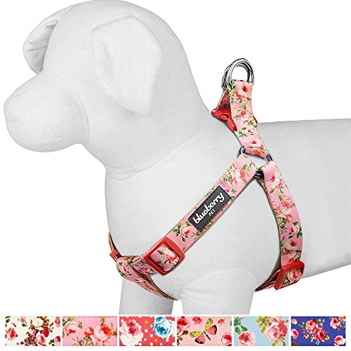 "Blueberry Pet Step-in Spring Scent Inspired Floral Rose Baby Pink Dog Harness, Chest Girth 19.5"" - 25.5"", S/M, Adjustable Harnesses for Dogs"
