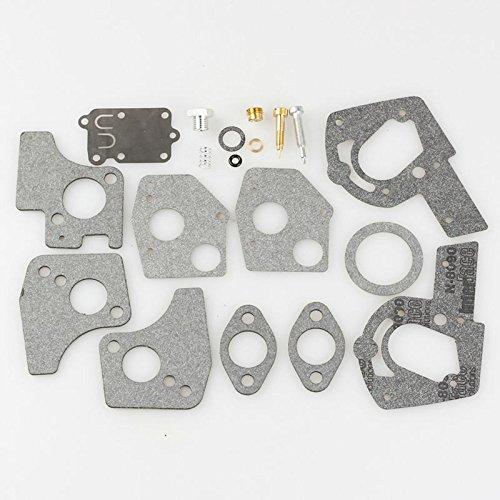 Briggs & Stratton 495606 carburador Kit de reparación para ...