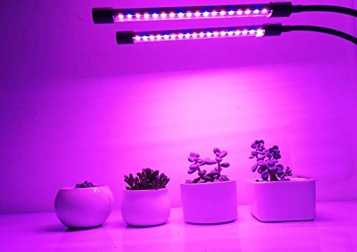 LED Grow Light AUTO ON Off Timing Function 20W 40LED Red Blue 2 1 Plant Grow Lamp Bulbs 360 Degree Adjustable Gooseneck for Indoor Plants 8 Dimmable Levels