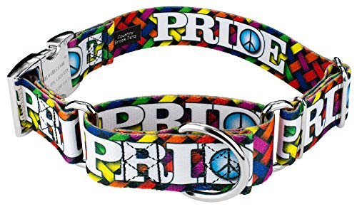 Country Brook Petz | 1 1/2 Inch Pride and Peace Martingale with Premium Buckle Dog Collar - Large