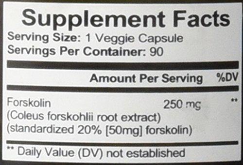 Forskolin-Belly-Buster-Burn-Fat-Build-Muscle-90-Count