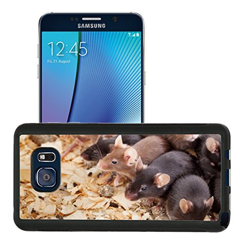 luxlady-premium-samsung-galaxy-note-5-aluminum-backplate-bumper-snap-case-image-id-30462778-photo-of