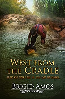 West From the Cradle by [Amos, Brigid]