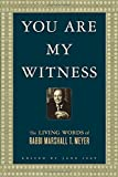 You Are My Witness, Rabbi Marshall T. Meyer, 0312328079