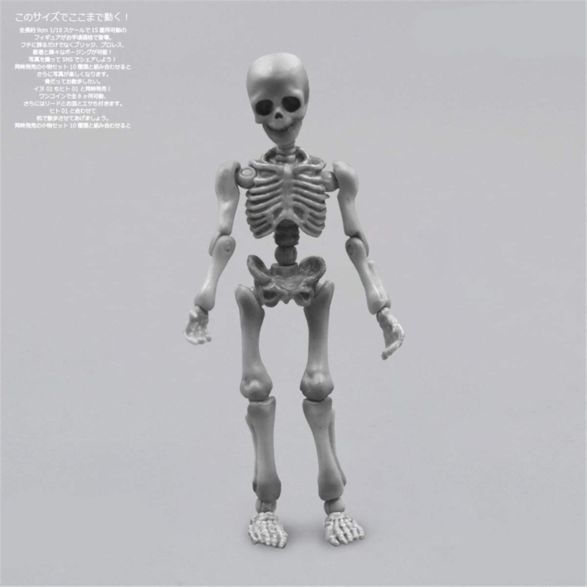 Movable Accessories Skeleton Human Model Skull Figure Toy Halloween Decor Gift
