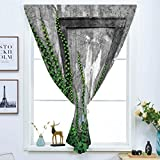 Blackout Window Curtain,Free Punching Magic Stickers Curtain,Mystic House Decor,Ivy on Wall with Aged Antique Empty Picture Frame as Window Creative Art,Green Charcoal,Paste style,for Living Room