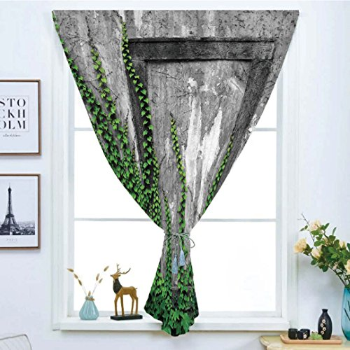 Blackout Window Curtain,Free Punching Magic Stickers Curtain,Mystic House Decor,Ivy on Wall with Aged Antique Empty Picture Frame as Window Creative Art,Green Charcoal,Paste style,for Living Room by iPrint