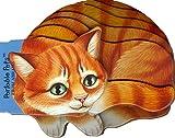 Kitten, Lorella Rizzati, 0810956330