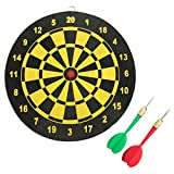 Thacher's Nook Dart Board 8'' Double-sided Dartboard with 2 Darts
