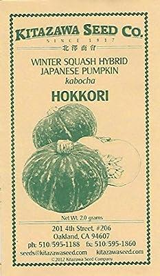 Winter Squash Hokkori hybrid